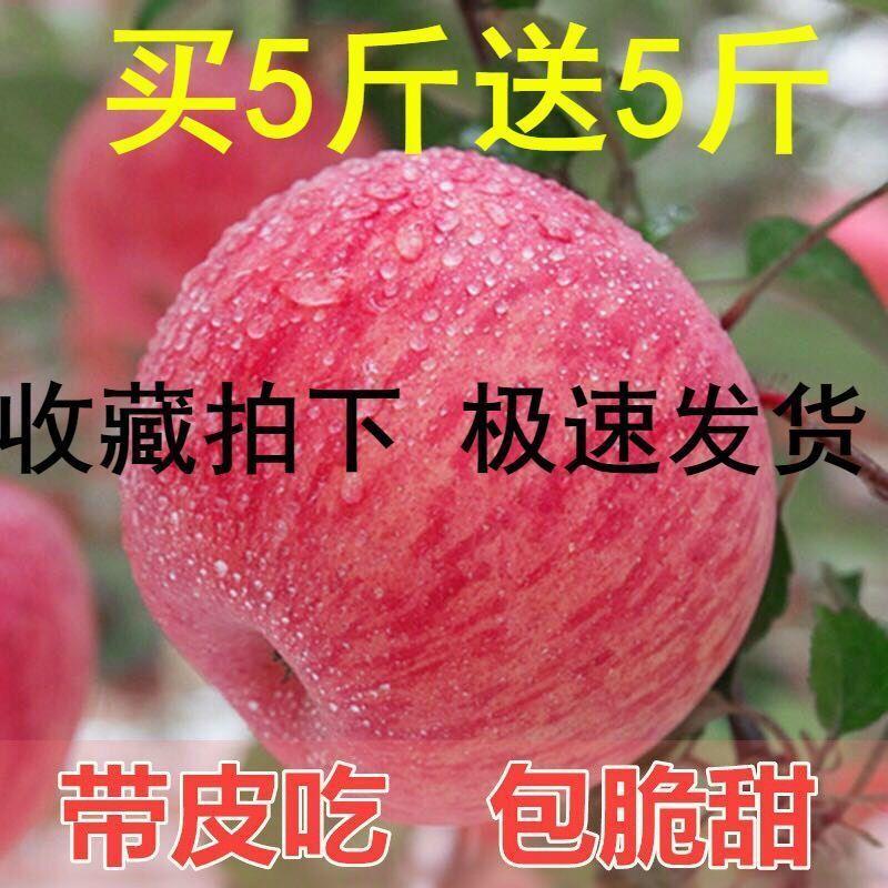 【冰糖心】现摘水果红富士苹果新鲜当季批发包邮带箱10/5斤