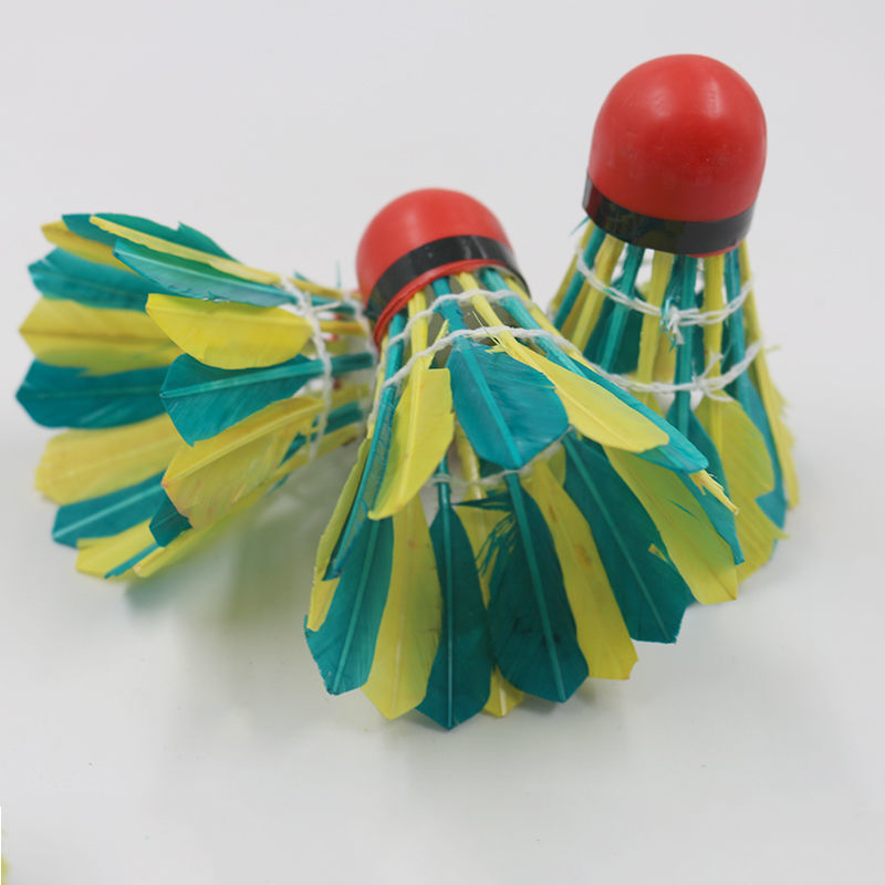 雙贏彩色耐打羽毛球家庭用球訓練防風羽毛球5只比賽羽毛球11只裝