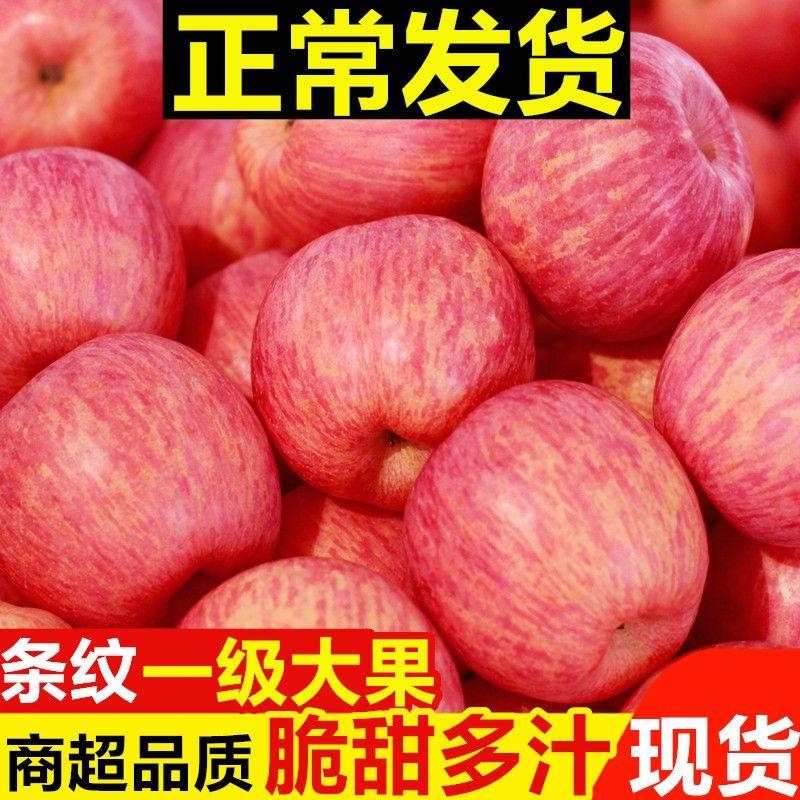 陕西红富士苹果正宗脆甜多汁当季现摘3/5/10斤不打蜡新鲜水果整箱