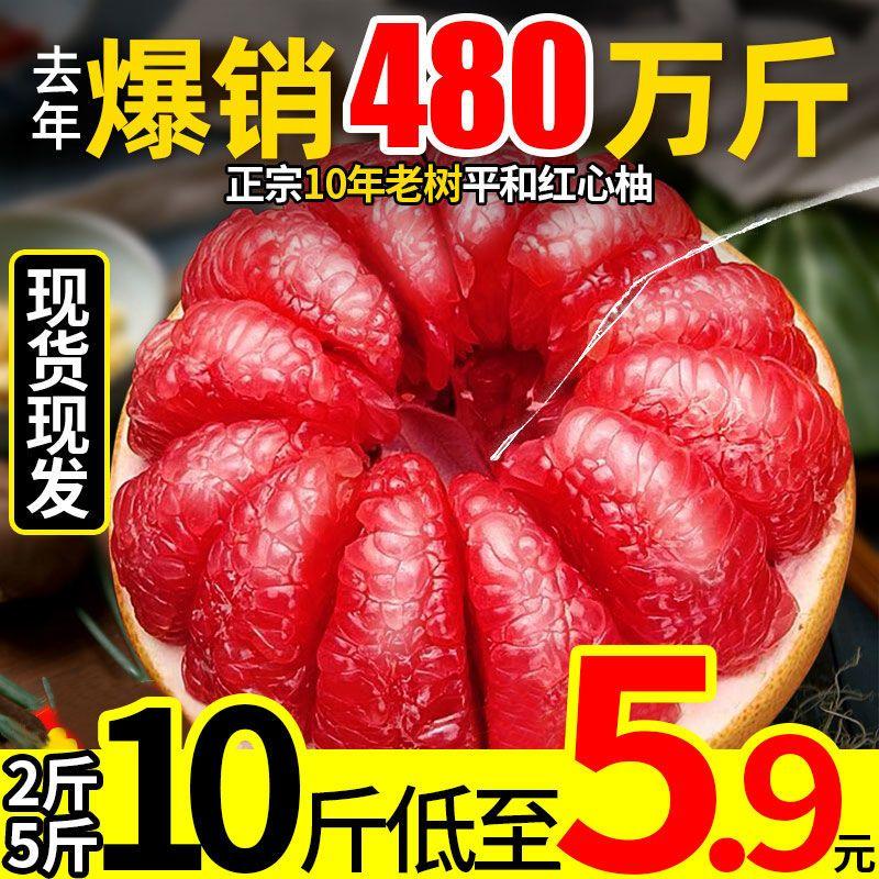 福建平和管溪红心柚子红肉蜜柚三红柚子新鲜孕妇水果当季整箱密柚