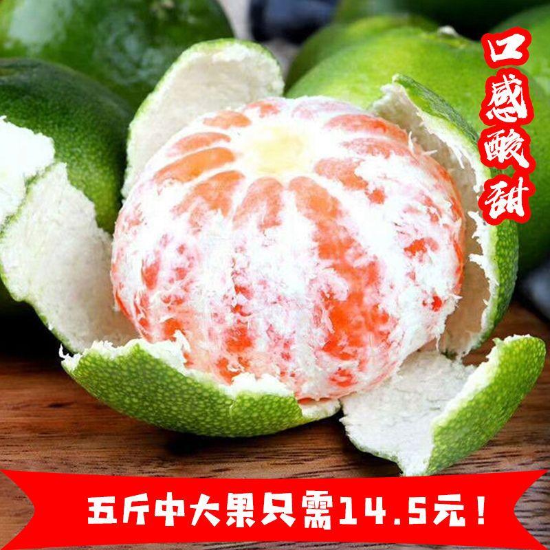 湖北热销新鲜橘子水果蜜桔薄皮青桔子