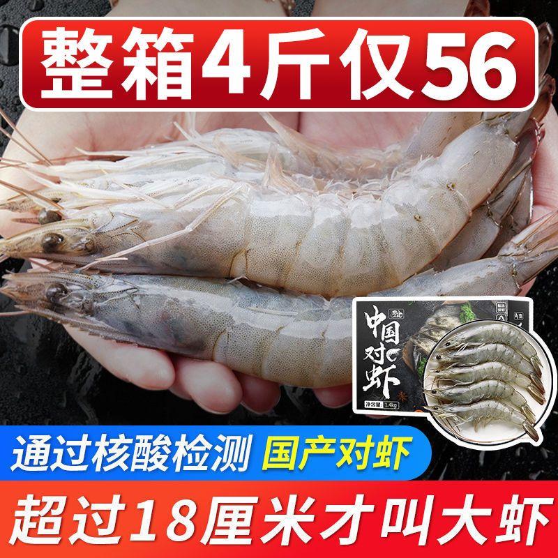 国产大虾超大海虾鲜活冷冻白虾对虾基围虾新鲜青岛海捕大虾海鲜