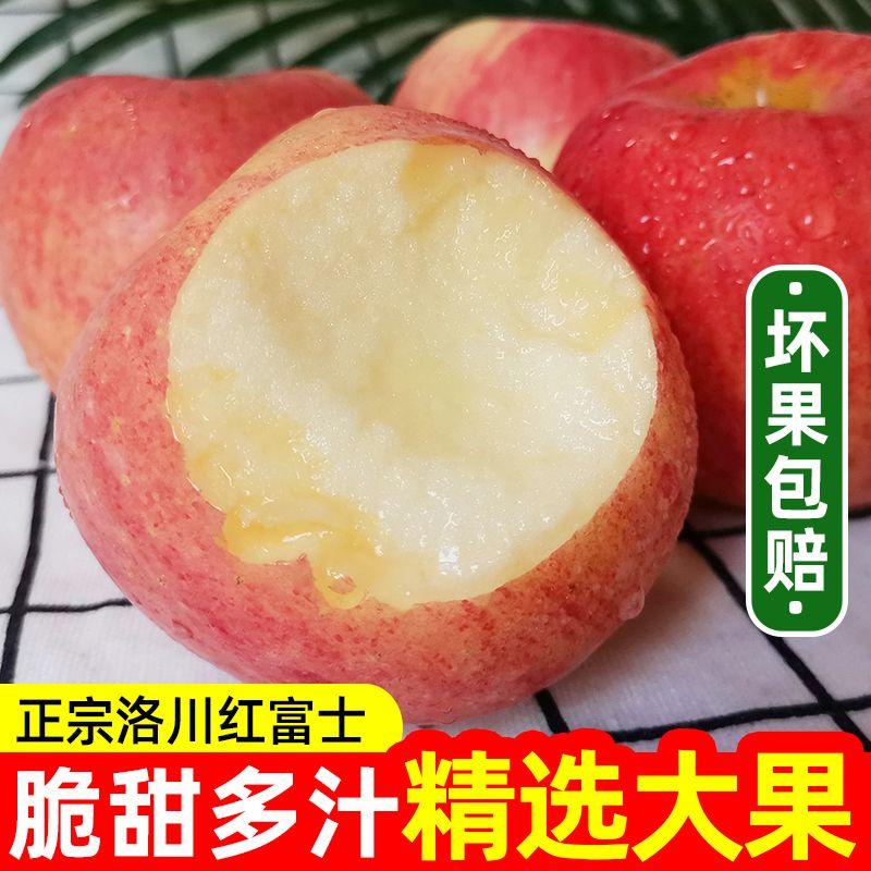 陕西洛川红富士苹果新鲜水果孕妇当季脆甜冰糖心红苹果整箱包邮