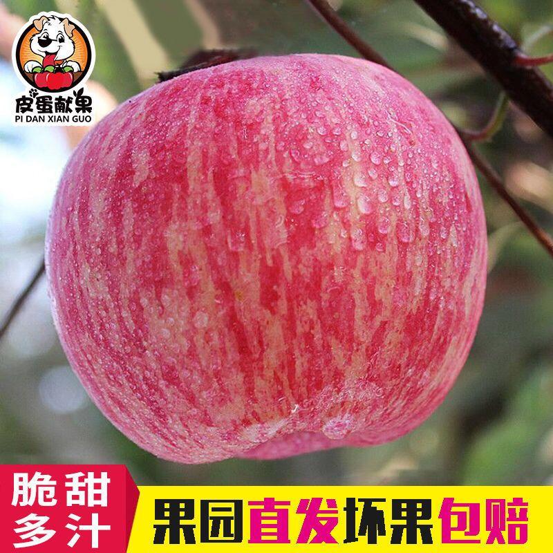 【限时特价/领券立减】10斤装红富士苹果现摘现发脆甜多汁丑苹果