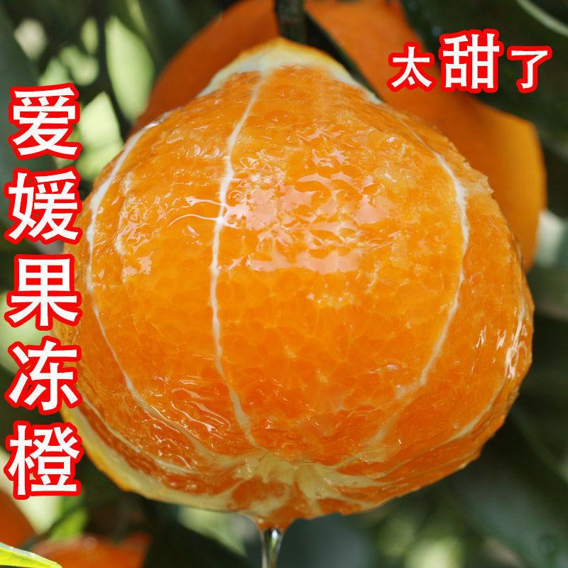 【小芳推荐!每晚18:30开播抽免单】四川爱媛38号果冻橙超甜柑橘桔