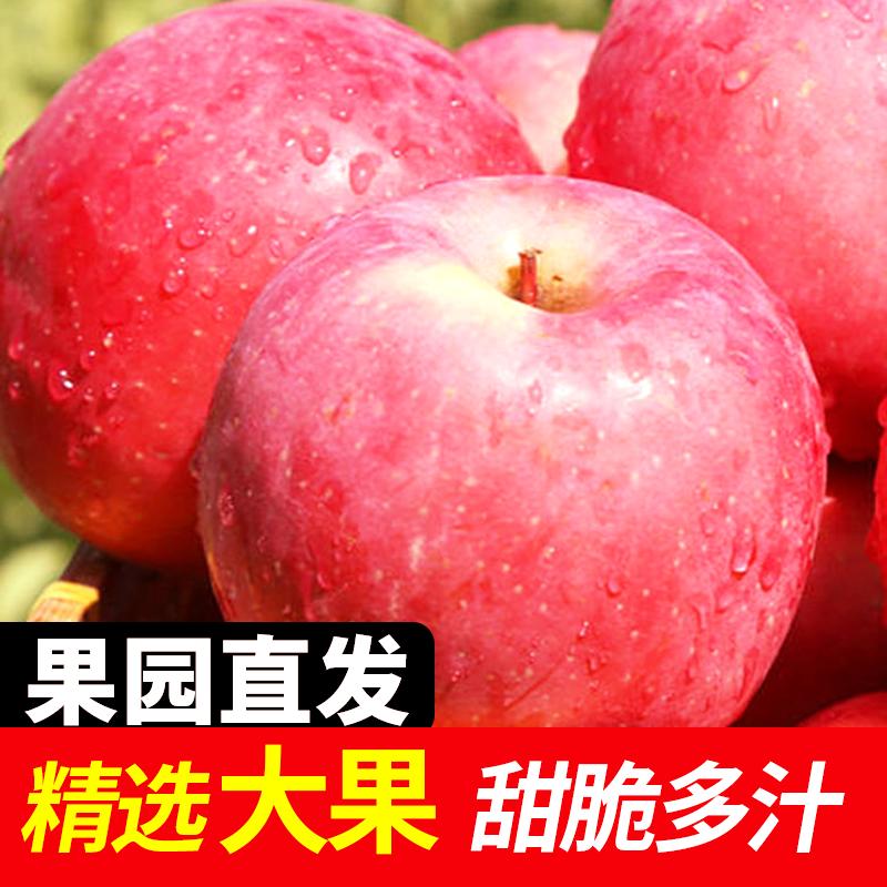 正宗烟台红富士苹果当季新鲜水果整箱批发3斤/5斤/10斤脆甜多汁