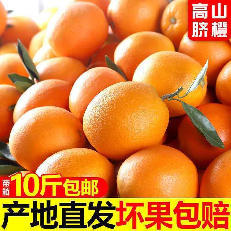 四川冰糖橙子当季水果新鲜3斤/5斤/10斤超甜橙子手剥脐橙整箱包邮