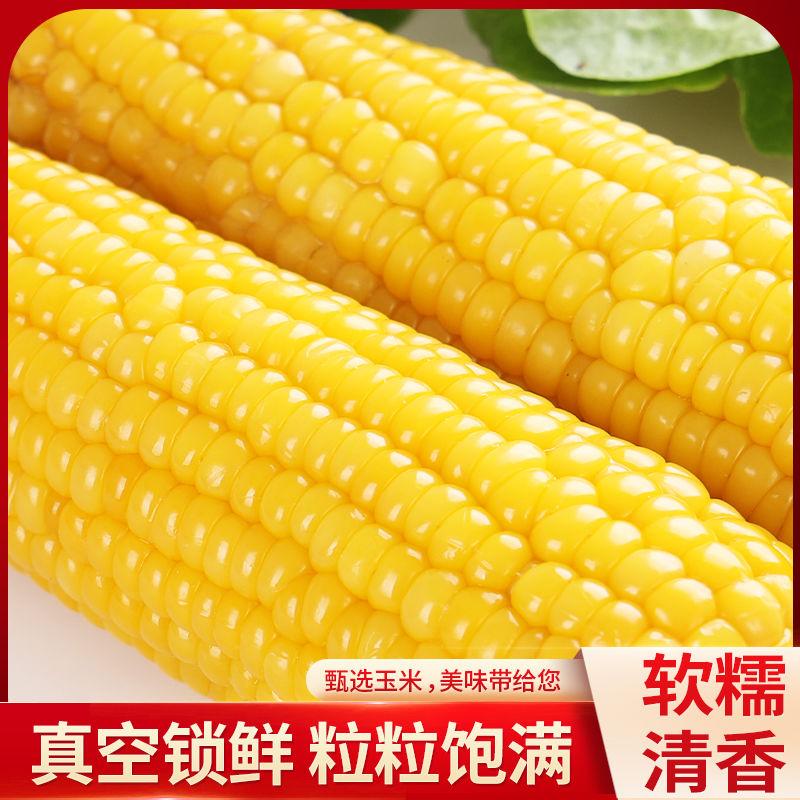 玉米新鲜真空包装东北黄糯玉米即食绿色甜糯玉米棒代餐杂粮黑玉米