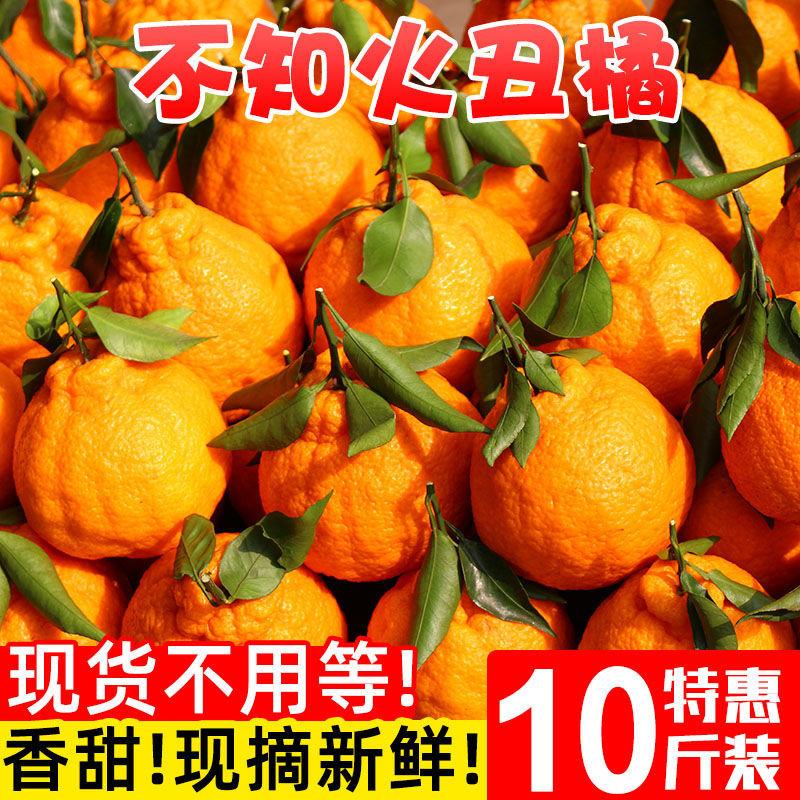 四川正宗丑橘不知火新鲜现摘丑八怪丑柑桔2/5/10斤装批发应季水果