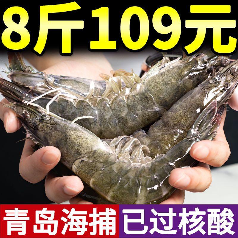 8斤新鲜大虾一箱鲜虾4斤活虾冷冻青岛基围虾超大10对虾海鲜批发