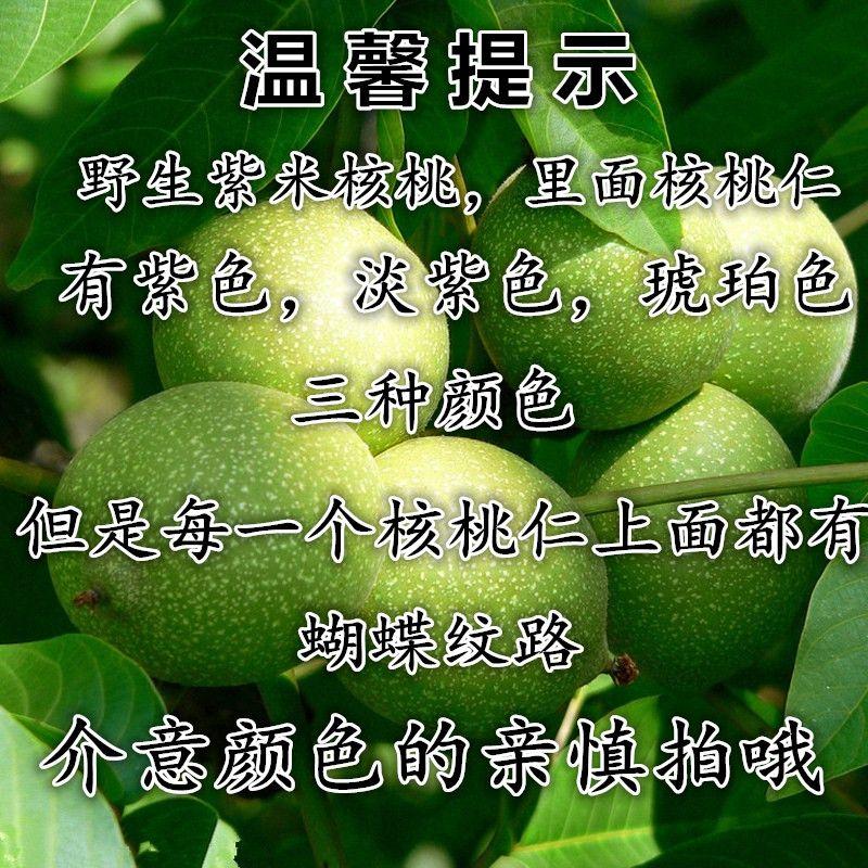 云南野生老树核桃薄皮薄壳野生特产纸皮山核桃清甜新货坚果500g