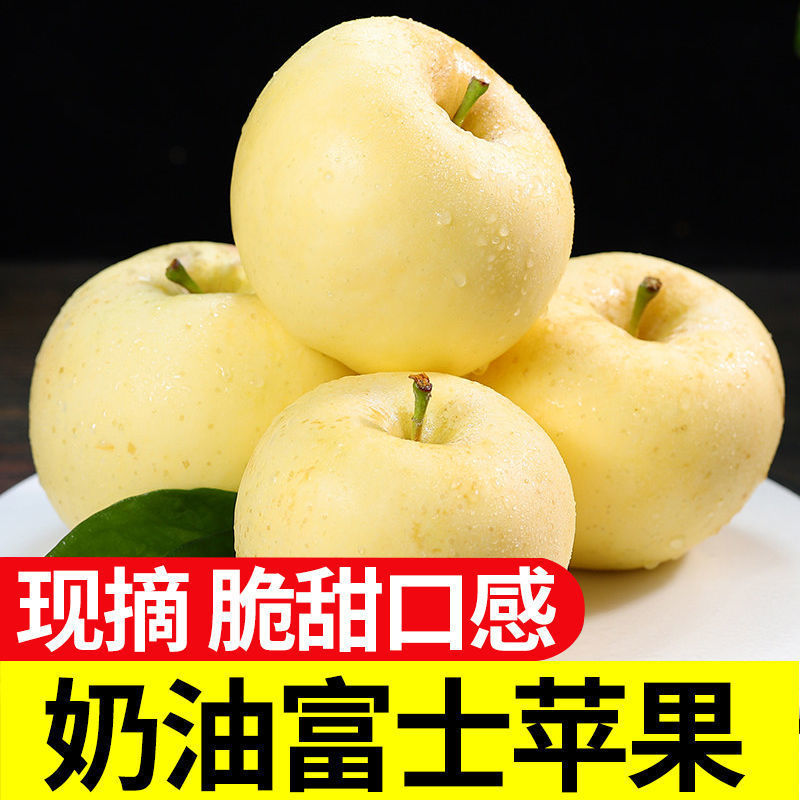 烟台奶油苹果牛奶脆甜富士苹果1/5/10斤新鲜水果批发黄金奶油苹果