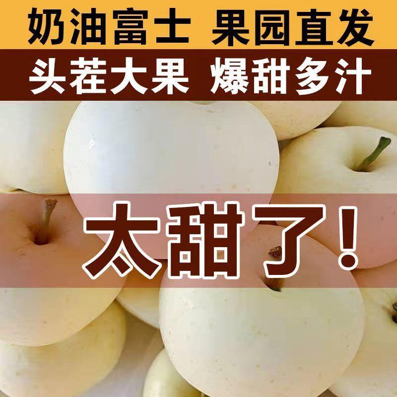 新鲜奶油苹果牛奶脆甜苹果富士苹果精品白苹果黄金富士奶油果