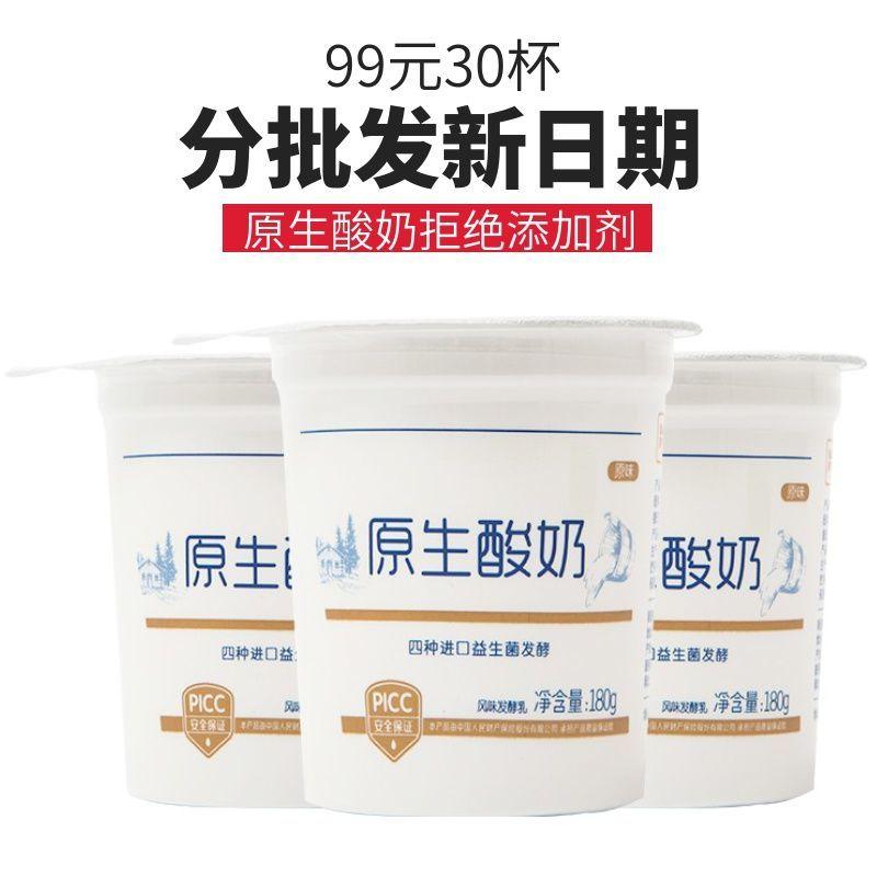订奶年卡分批发货新日期康诺酸奶无添加剂整箱批顺丰包邮低温酸奶