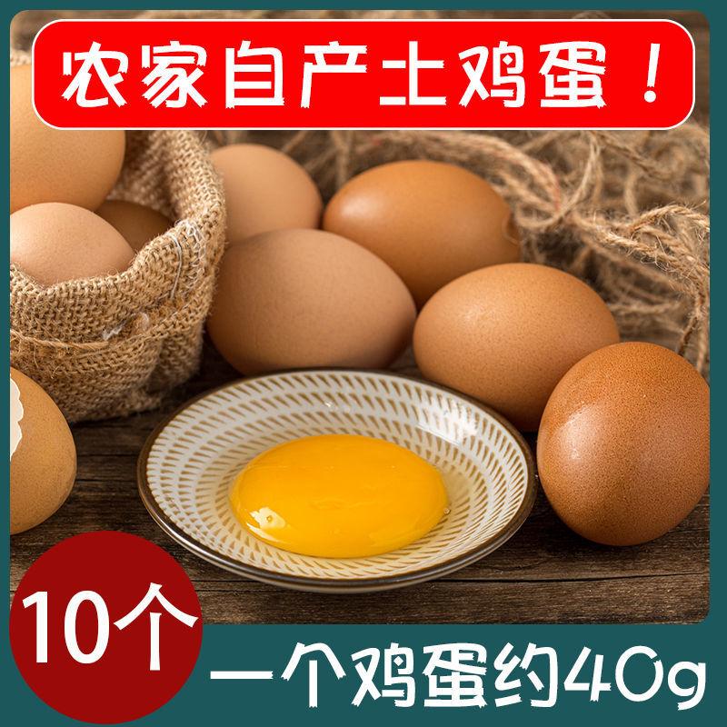 正宗土鸡蛋农家散养新鲜纯农村自养天然10枚草鸡蛋柴鸡蛋笨鸡蛋