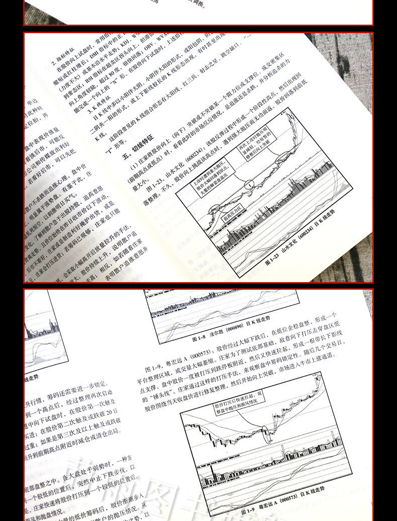 滿三免運!正版 與莊共舞 莊家拉升手法與實錄 麻道明著 金融股票炒股書籍