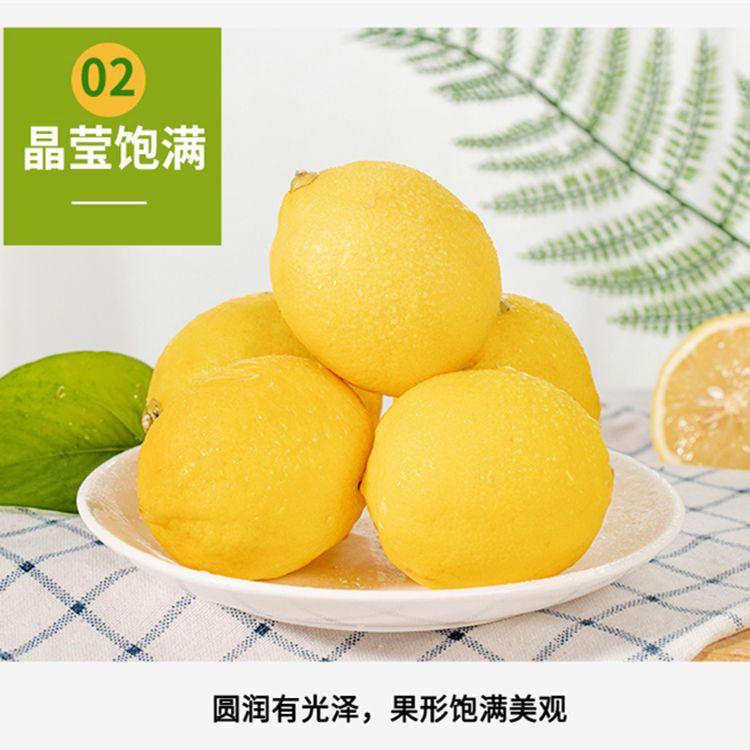 安岳黄柠檬新鲜柠檬泡水