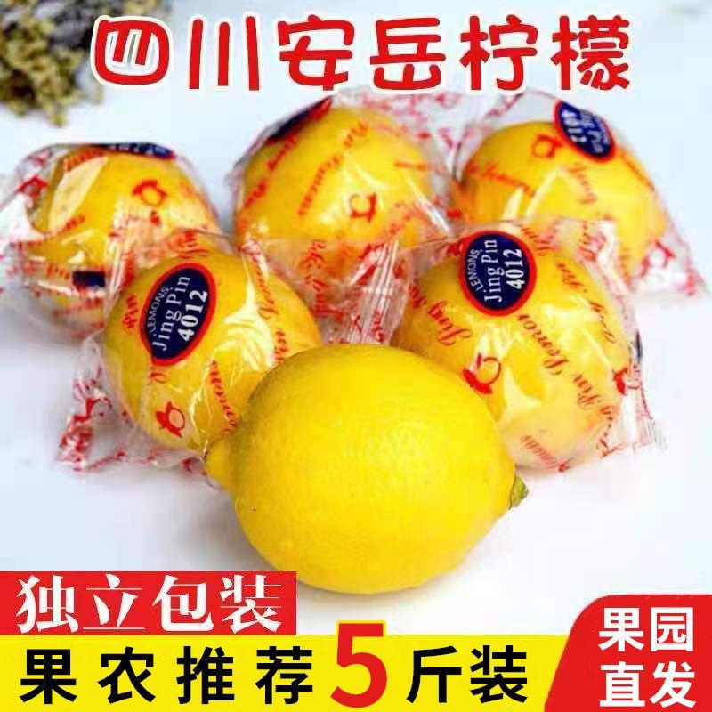 安岳黄柠檬新鲜水果包邮批发柠檬果子生鲜水果多规格可选柠檬泡水