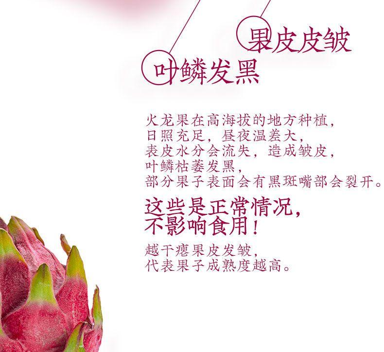 【顺丰包邮】优质新鲜红心火龙果白心火龙果大果5斤水果新鲜当季火龙果整箱装【大均良品】