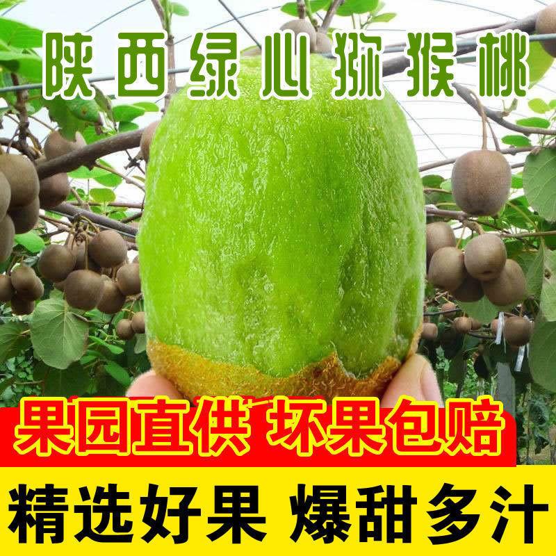 陕西绿心猕猴桃奇异果2斤新鲜水果周至弥猴桃孕妇大果整箱包邮
