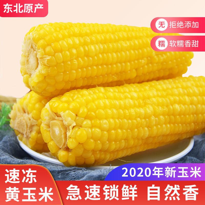 东北特产玉米棒速冻玉米甜糯粘非转基因粗粮黄玉米棒粗粮批发