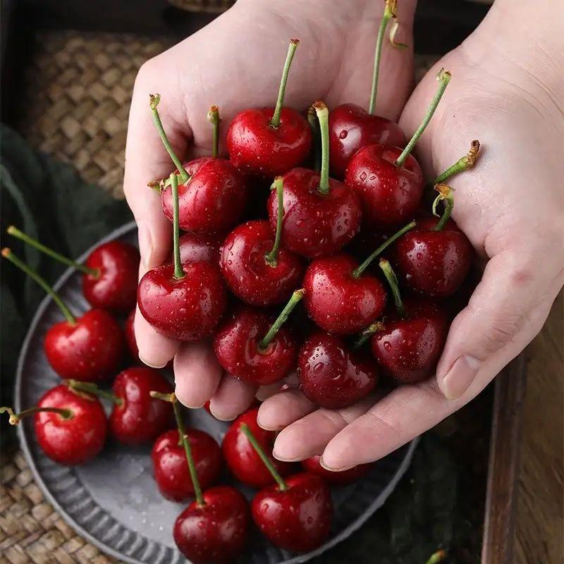 智利车厘子新鲜樱桃1斤/3斤装