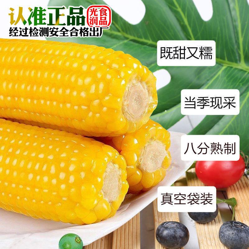 【一等黄糯】东北绿色黄糯玉米新鲜现摘真空包装速食甜玉米黏苞米