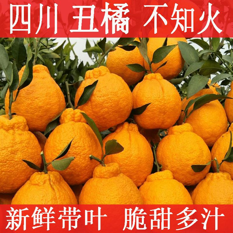 【鲜果直发】四川丑橘不知火丑八怪橘子当季新鲜孕妇水果批发包邮