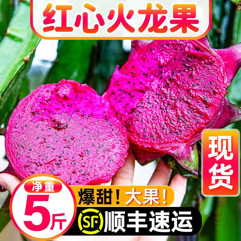 【红心火龙果】当季新鲜水果火龙果红心5斤整箱顺丰包邮现摘批发
