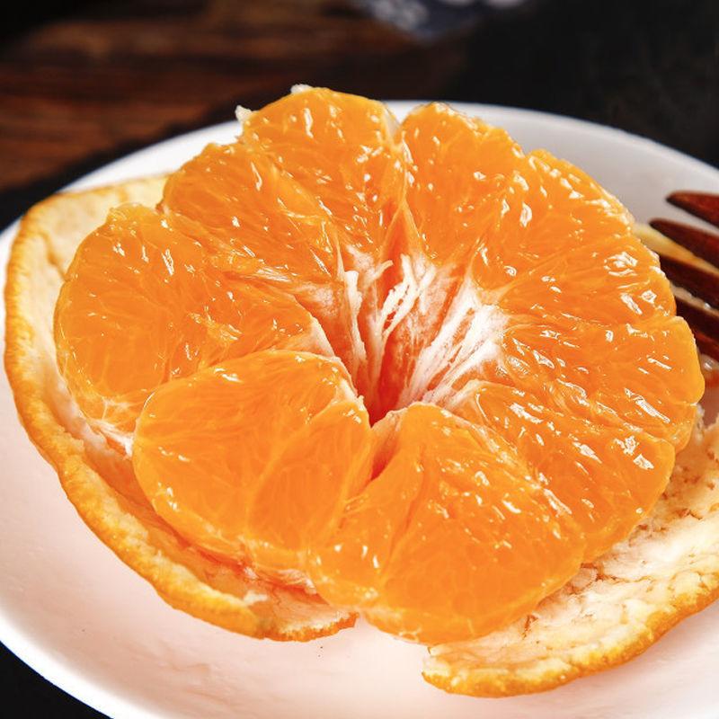 湘西椪柑芦柑红皮甘桔子应季孕妇水果