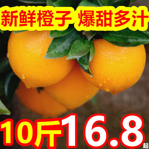 【坏果包赔】新鲜橙子爆甜多汁高山应季孕妇水果整箱包邮6/10斤