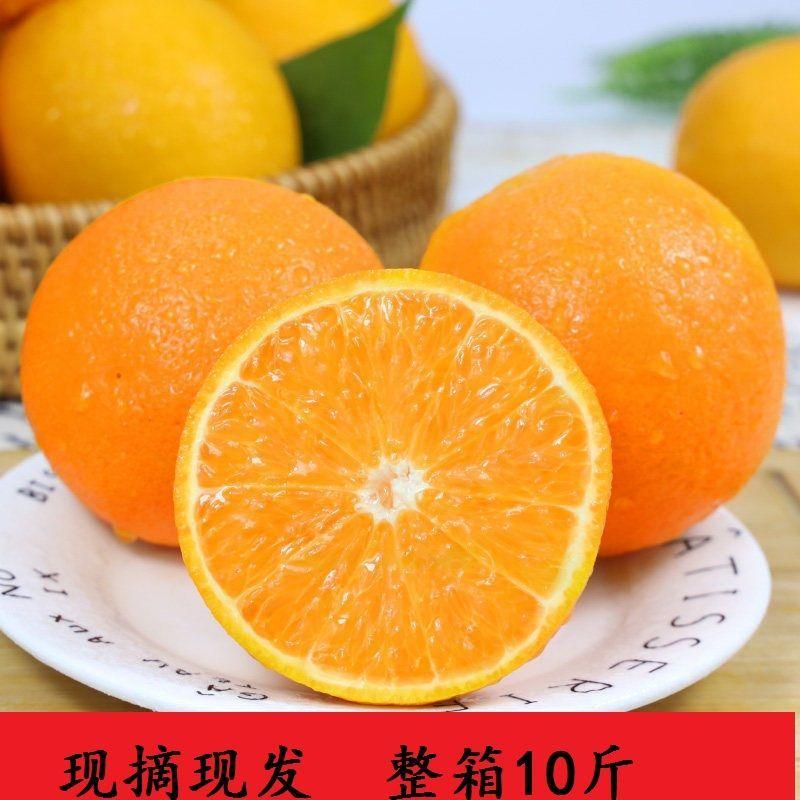 重庆脐橙当季水果现摘现发手剥橙子非赣南季橙整箱装冰糖锦橙继橙