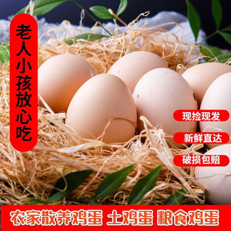 【10枚】农家散养粮食生态土鸡蛋虫草蛋笨鸡蛋月子宝宝蛋新鲜现捡