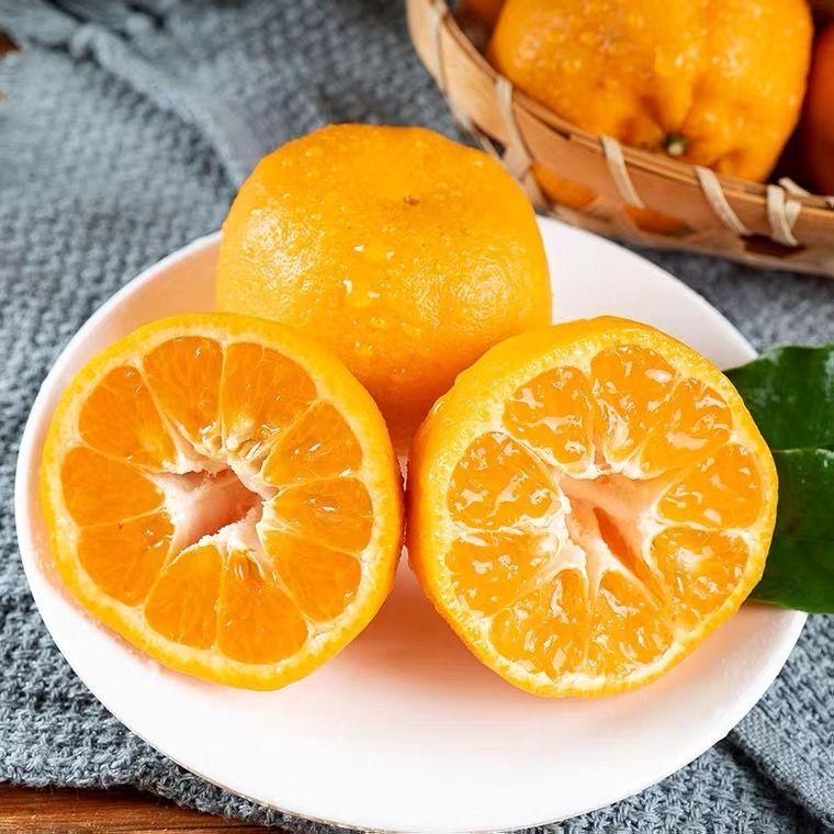 正宗湘西椪柑新鲜桔子
