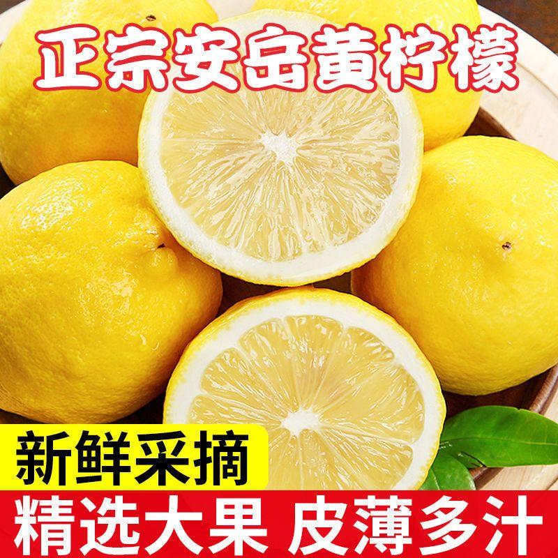 四川安岳黄柠檬一级大果当季现摘孕妇水果批发包邮新鲜薄皮柠檬