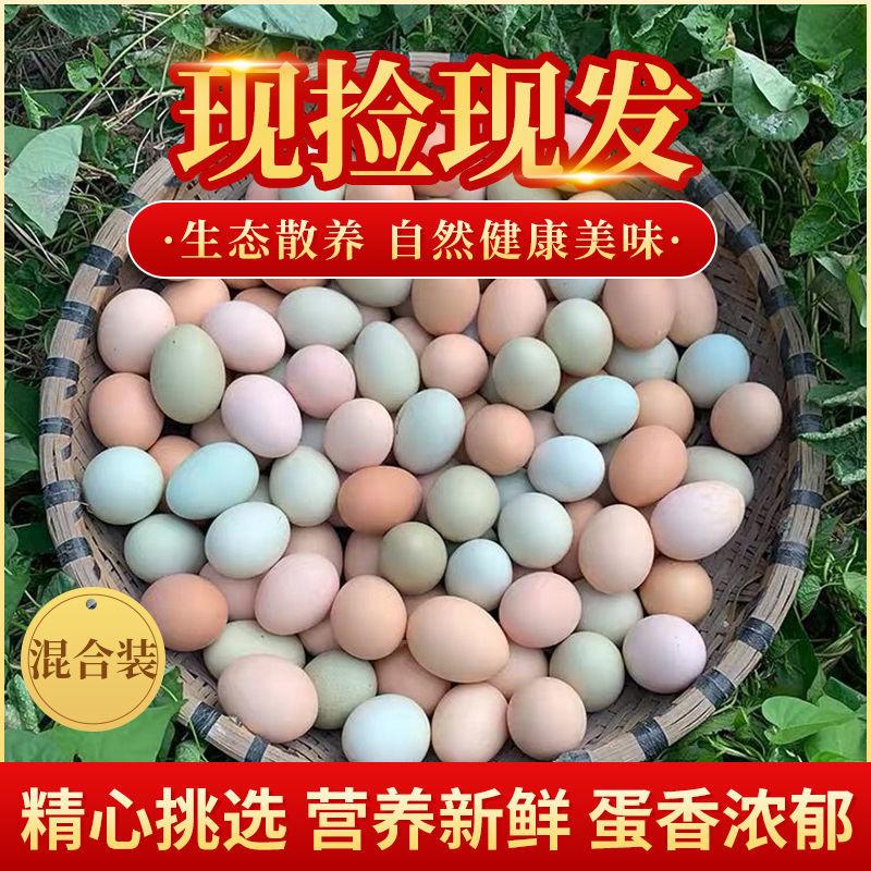 天然草鸡蛋农家散养正宗土鸡蛋月子纯天然野外柴鸡蛋特产笨鸡蛋
