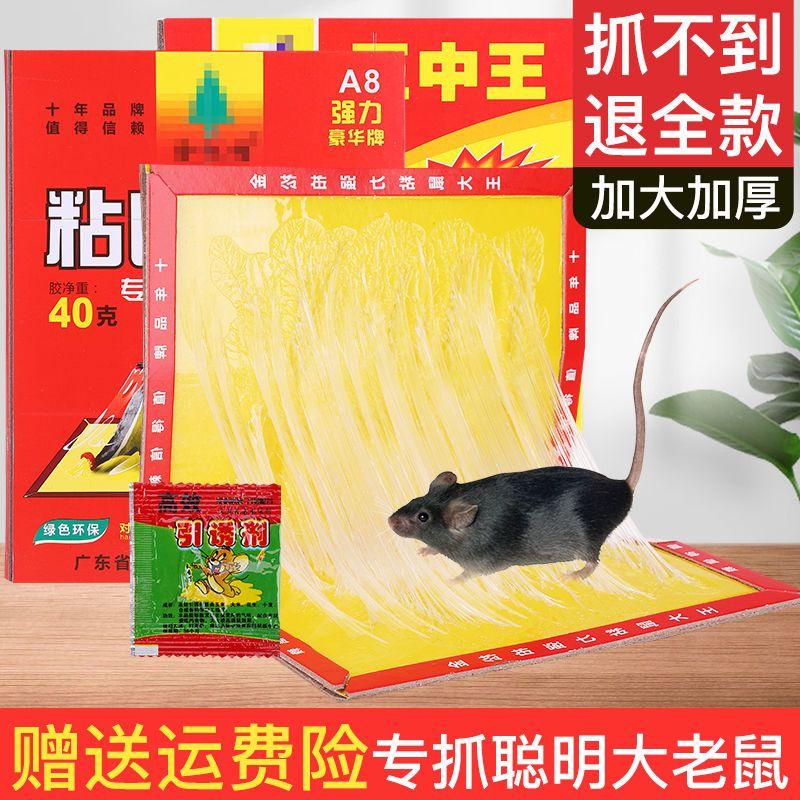 超粘鼠板强力老鼠贴粘灭老鼠板胶沾捉抓老鼠夹捕灭鼠神器老鼠克星