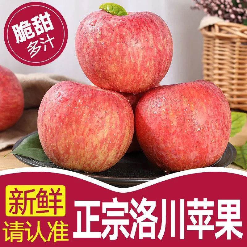 【脆甜】陕西正宗洛川苹果红富士当季新鲜水果脆甜冰糖心苹果批发