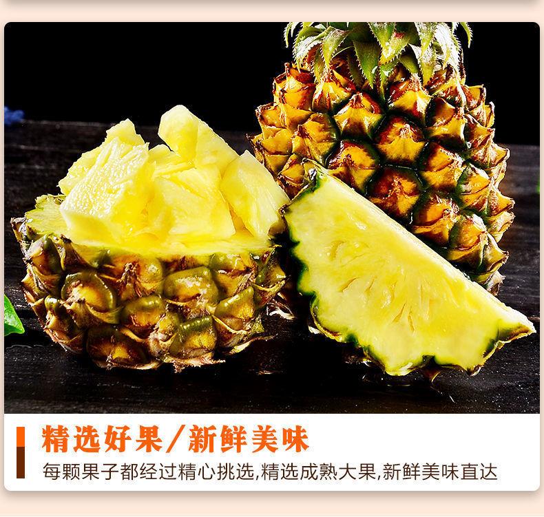【顺丰包邮】徐闻香水菠萝新鲜当季热带水果大菠萝2/8斤包邮【小度美食】