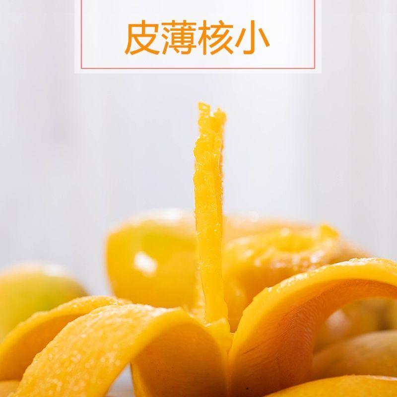 小台芒新鲜10斤热带水果应当季整箱小核鸡蛋芒海南小台农芒果