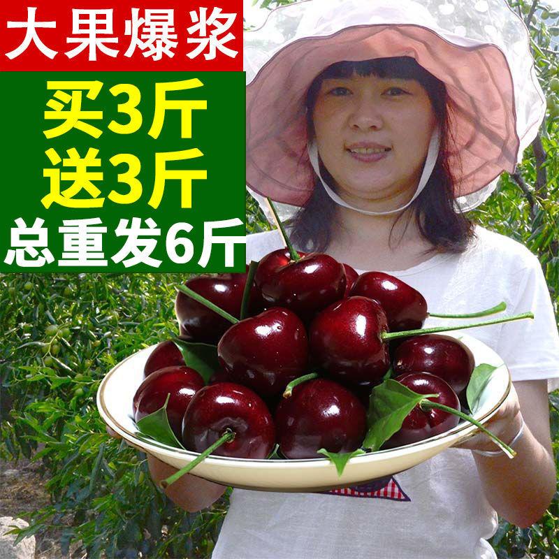 【大果爆浆】现摘山东烟台大樱桃国产车厘子新鲜水果2/3/5/6斤【6月3日发完】