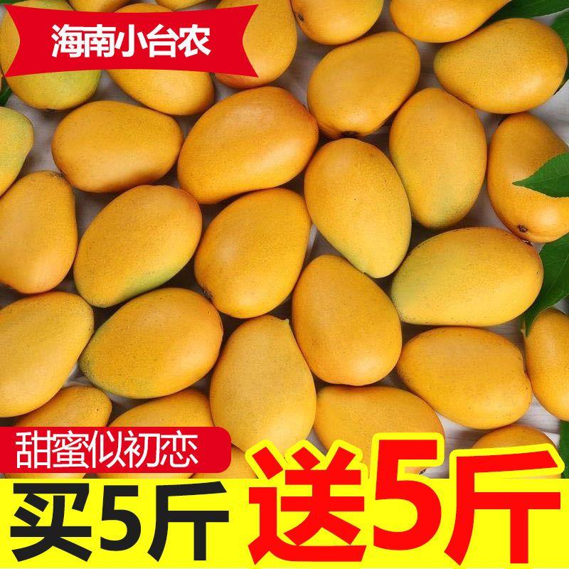 海南小台农芒果10斤新鲜热带水果应当季非红金龙青甜心忙整箱包邮