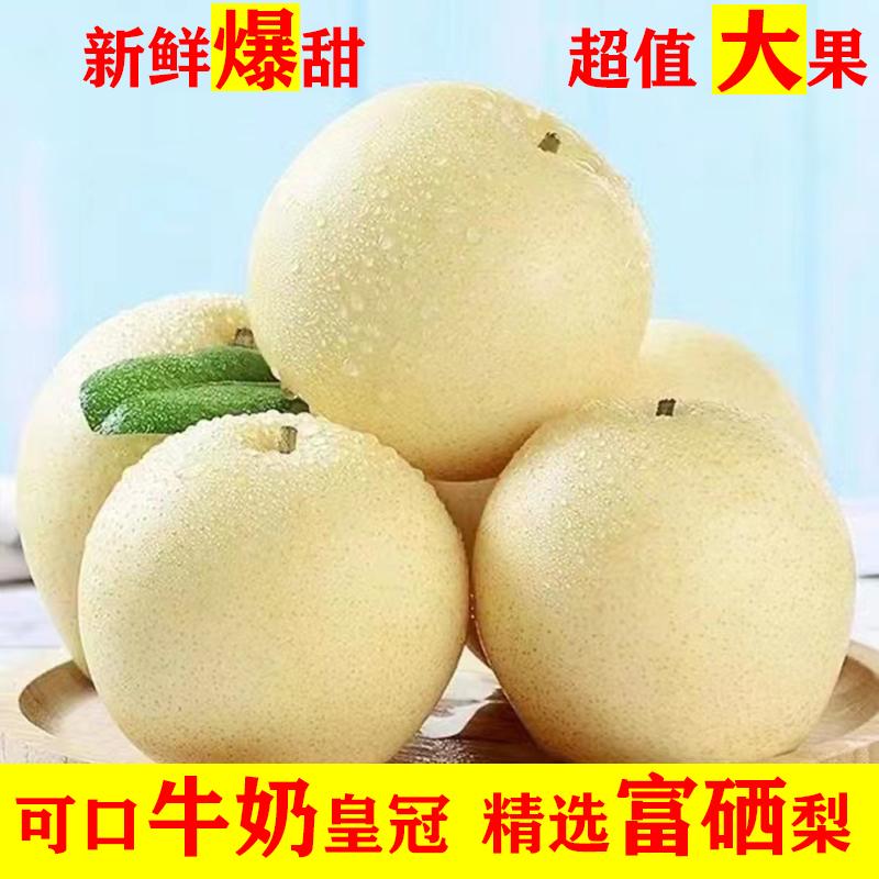梨子皇冠梨水果批发新鲜应季特价水果甜梨子皮薄批发一整箱非雪梨