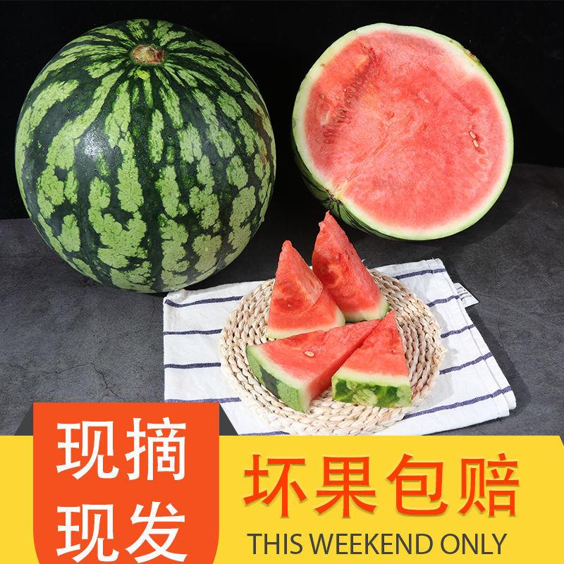 【现摘现发】新鲜水果8424西瓜水果麒麟西瓜皮薄肉甜包甜孕妇水果