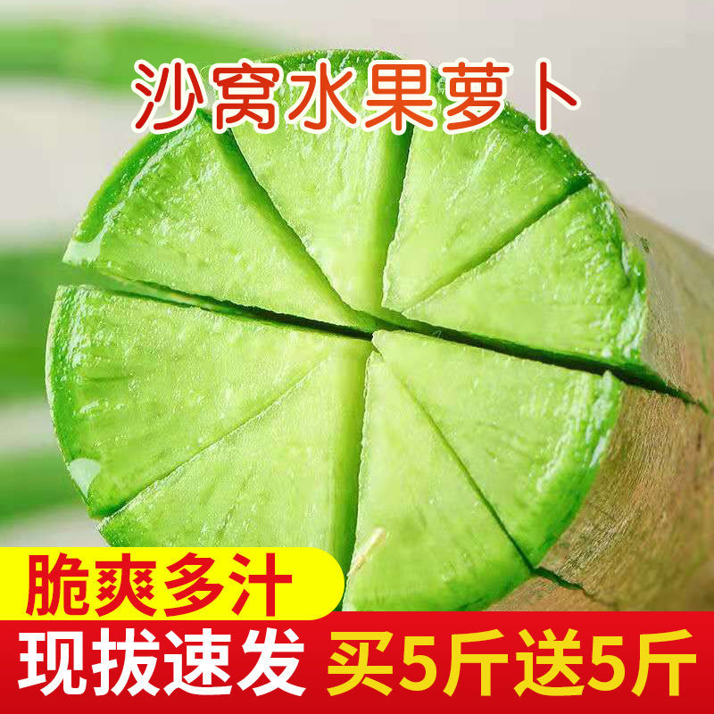 37849-【现拔新货】水果萝卜生吃甜脆 潍县沙窝萝卜水果青萝卜新鲜蔬菜-详情图