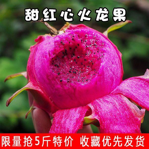 【限量抢】火龙果红心超甜当季新鲜水果批发营养价值高