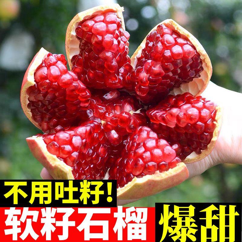 【5斤23】四川会理突尼斯软籽石榴当季新鲜水果红籽现摘包邮石榴/