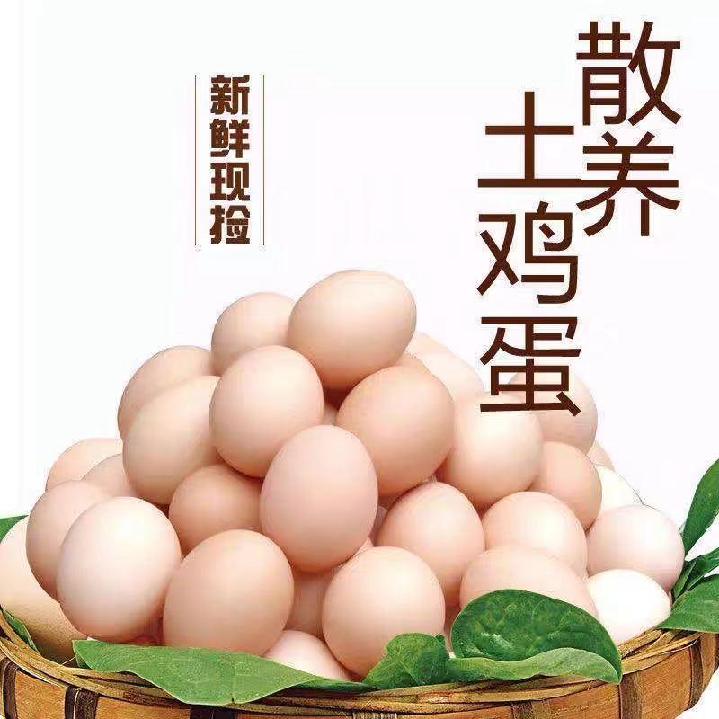 54231-农家土鸡蛋40枚正宗散养柴鸡蛋10枚现捡新鲜月子蛋笨鸡蛋批发整箱-详情图