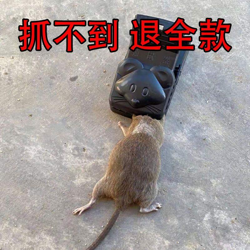 老鼠夹子一窝端强力灭鼠粘鼠板贴捕鼠神器抓杀驱老鼠笼全自动超强