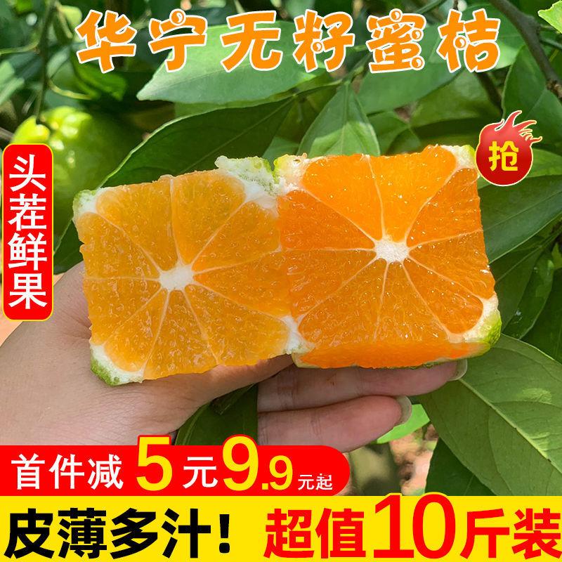 54181-青皮橘子整箱桔子新鲜10斤云南特早蜜桔酸甜现摘当季孕妇水果包邮-详情图
